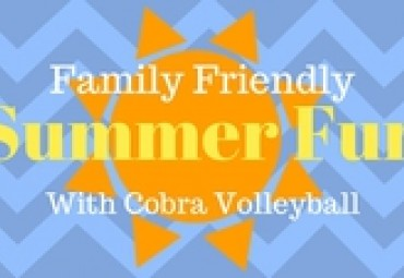 Looking for Family Friendly Summer Fun? Set Up a Cobra Volleyball Net!