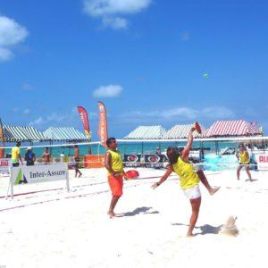 Viper Beach Tennis Net System