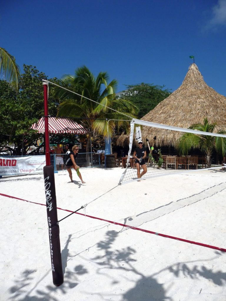 Cobra Beach Tennis Net System – Paddle Version