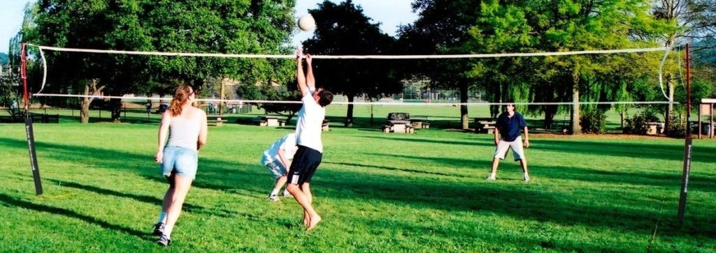Viper Portable Volleyball Net System