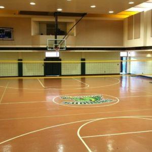 Cobra Indoor Volleyball Net System
